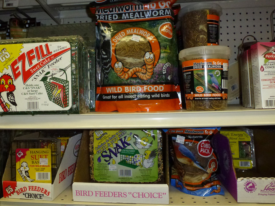 Wild Bird Feed, Mealworms and Suet - Available at Cherokee Feed & Seed