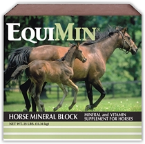 Southern States Equine Horse Mineral Block