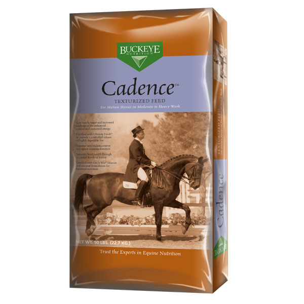 Buckeye Cadence horse feed is available at Cherokee Feed & Seed