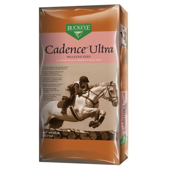 Buckeye Cadence Ultra horse feed is available at Cherokee Feed & Seed