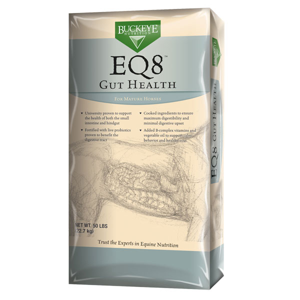 Buckeye EQ8 Gut Health horse feed is available at Cherokee Feed & Seed