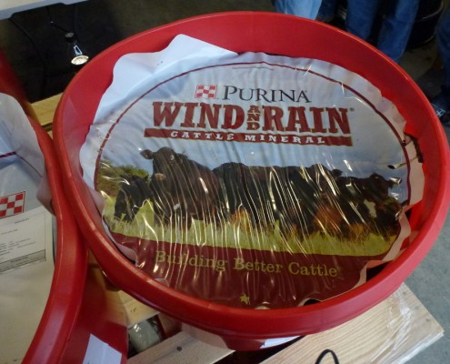 Purina Wind and Rain Cattle Mineral tub