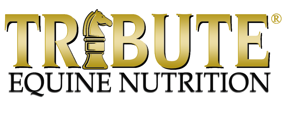 Tribute Equine Nutrition logo