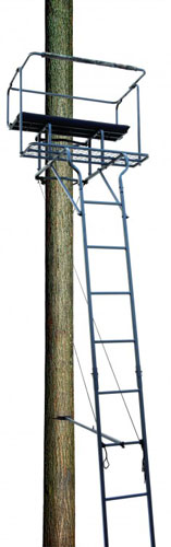 Big Dog Big Bud 18', Two-Person Ladder Tree Stand, BDL-455
