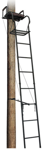 Big Dog Foxhound 16' Ladder Tree Stand, BDL-101