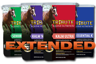 Tribute Equine Nutrition Horse Feed is available at Cherokee Feed & Seed