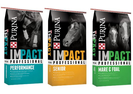Purina IMPACT Horse Feeds - Available at Cherokee Feed & Seed stores in Georgia