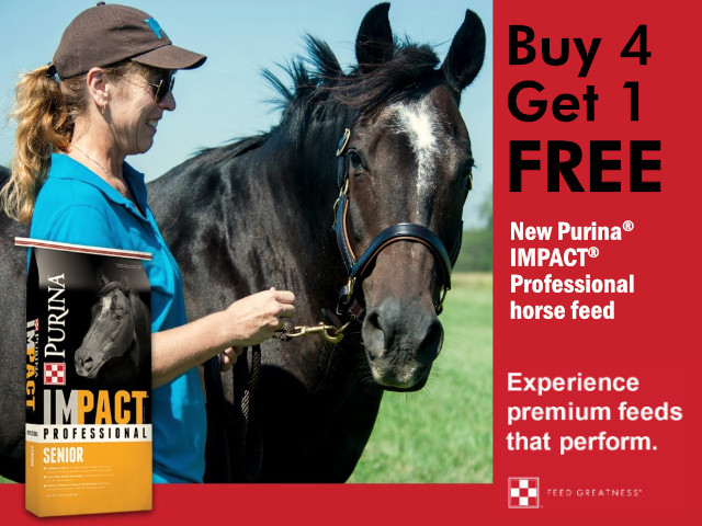 Buy One Get One FREE - Purina IMPACT Professional Horse Feed - Cherokee Feed & Seed - GA