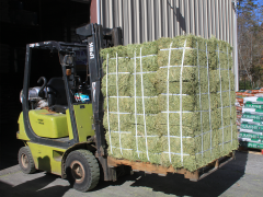 Alfalfa Hay - Available at Cherokee Feed & Seed