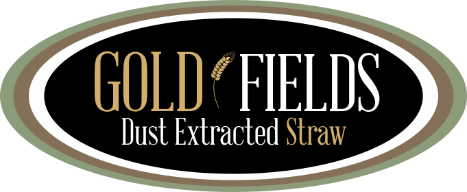 Gold Fields Dust Extracted Straw