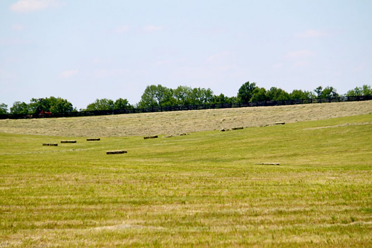 Fertilizer for Pastures and Hay Fields