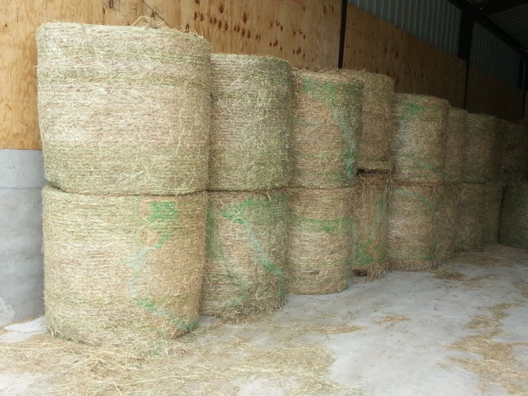 Cherokee Feed & Seed sells square and round bales in large and small quantities.