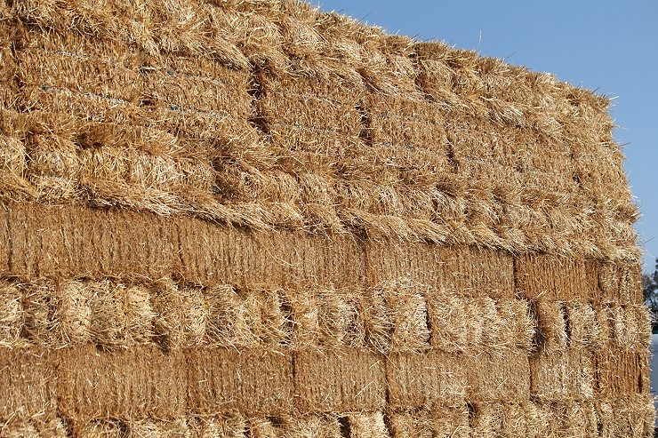 Straw and quality hay available at Cherokee Feed & Seed