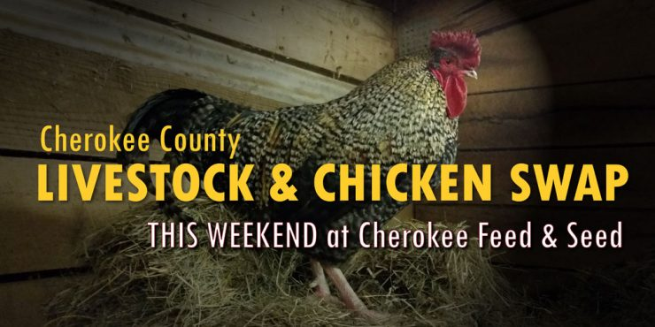 Livestock & Chicken Swap This Saturday at Cherokee Feed & Seed in Ball Ground, GA