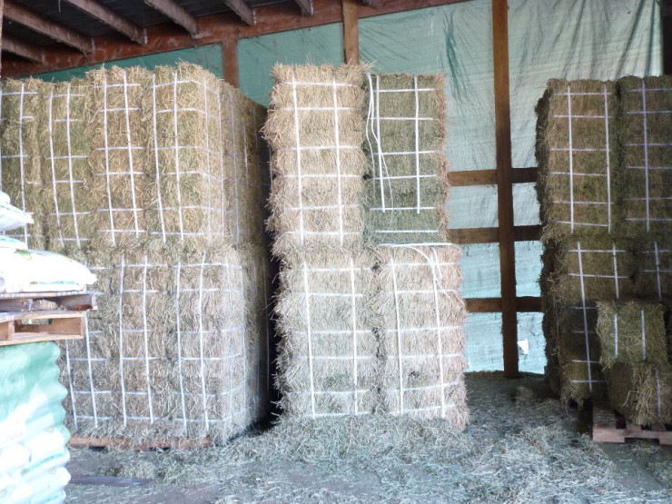 Round and square bales of hay at Cherokee Feed & Seed