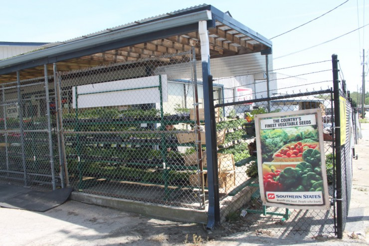 Cherokee Feed & Seed has two locations with Seeds and Plants - Gainesville and Ball Ground, GA
