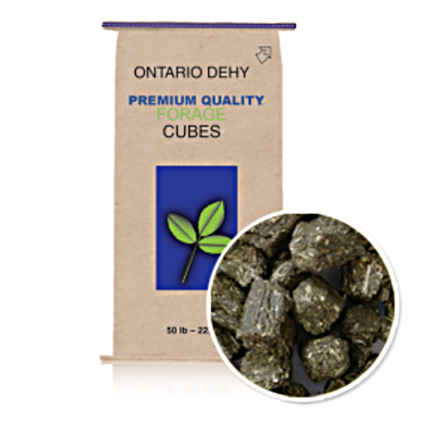 Hay Shortages & Horse Hay Forage Alternatives Triple Crown Ontario Dehydrated Timothy Balance Cubes 50 lb