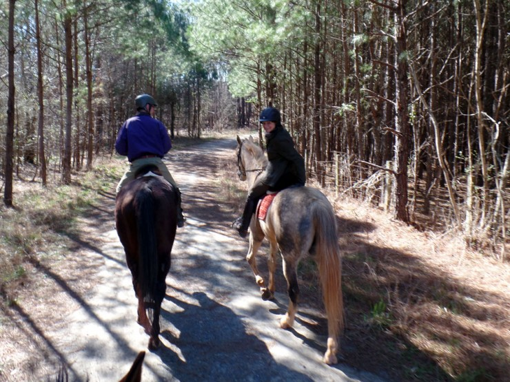 Cherokee County Equine Notification List