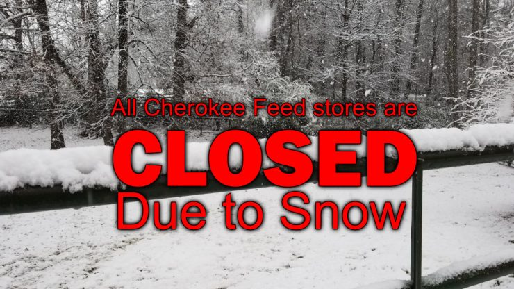 All Cherokee Feed & Seed Stores are closed due to snow - 20171208