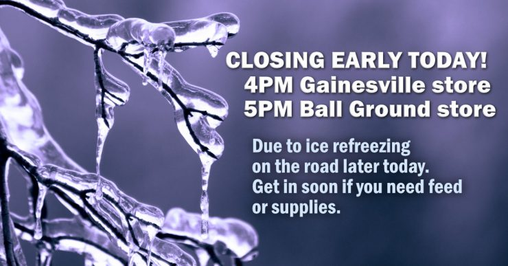 Cherokee Feed & Seed stores will be closing early today.
