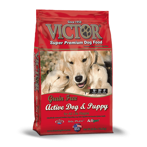Victor Active Dog & Puppy