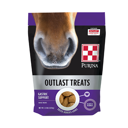 Stop into Cherokee Feed & Seed located in Ball Ground, and Gainesville, Georgia for any and all of your equine needs including Purina Outlast Horse Treats