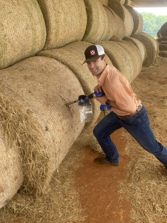 hay and forage testing process